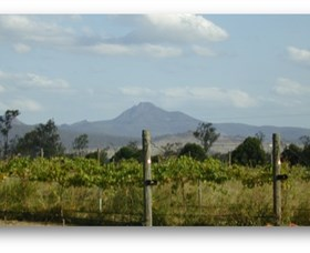 Ironbark Ridge Vineyard