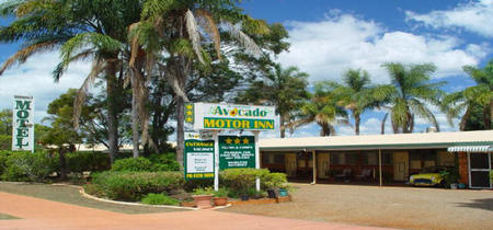 Avocado Motor Inn - Accommodation in Surfers Paradise