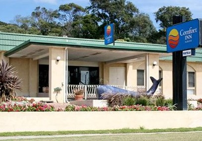 Comfort Inn Albany - Accommodation in Surfers Paradise