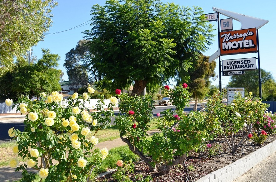 Narrogin Motel - Accommodation in Surfers Paradise