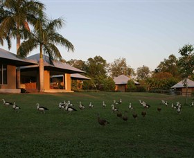Feathers Sanctuary - Accommodation in Surfers Paradise