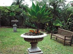 Bangalow Retreat - Accommodation in Surfers Paradise