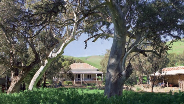 Brooklyn Farm Bed and Breakfast - Accommodation in Surfers Paradise