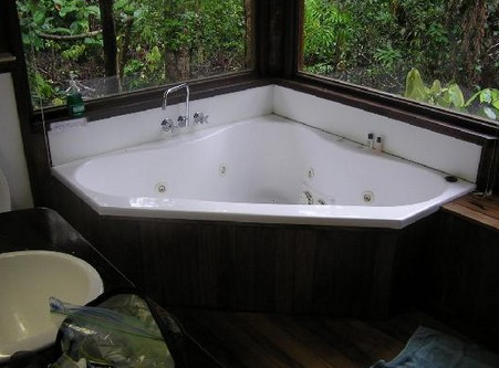 The Canopy Rainforest Tree Houses and Wildlife Sanctuary - Accommodation in Surfers Paradise