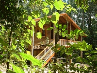 Rivers Edge Rainforest Retreat - Accommodation in Surfers Paradise