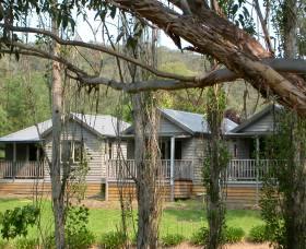 The Homestead Cabins Brogo - Accommodation in Surfers Paradise