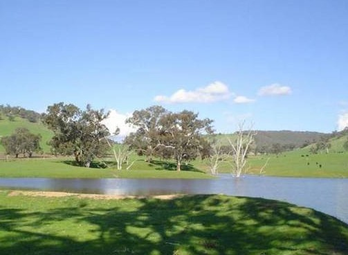 Hillview Farmstay - Accommodation in Surfers Paradise