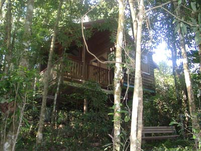 Adjinbilly Rainforest Retreat Cabins