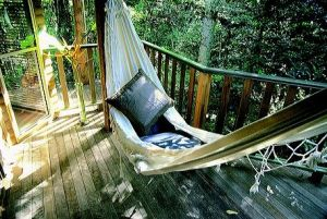 Narrows Escape Rainforest Retreat - Accommodation in Surfers Paradise