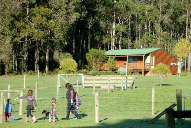 Diamond Forest Farm Stay - Accommodation in Surfers Paradise