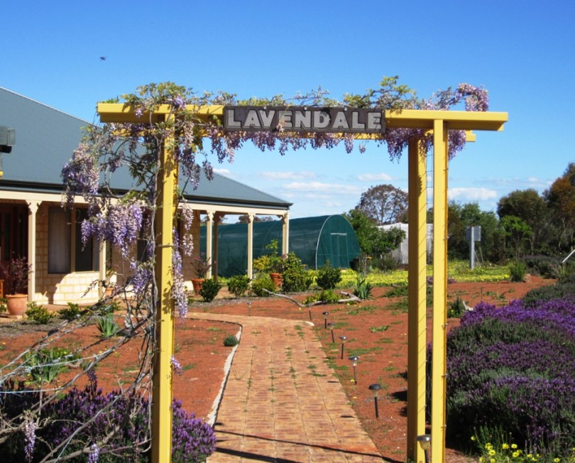 Lavendale Farmstay and Cottages - Accommodation in Surfers Paradise