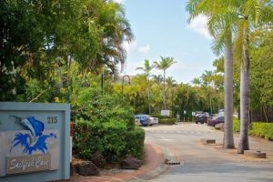 Sailfish Cove - Accommodation in Surfers Paradise