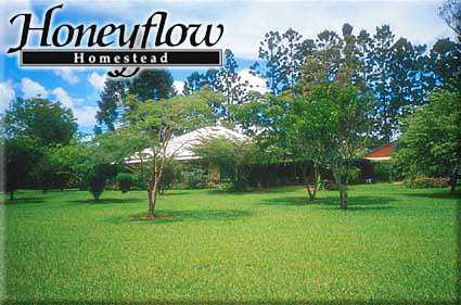 Honeyflow Homestead - Accommodation in Surfers Paradise