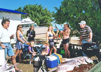 Shark Bay Cottages - Accommodation in Surfers Paradise