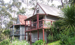 Great Ocean Road Cottages - Accommodation in Surfers Paradise