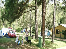 Glasshouse Mountains Holiday Village - Accommodation in Surfers Paradise