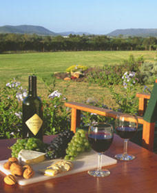Tranquil Vale Vineyard Cottages - Accommodation in Surfers Paradise