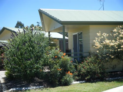 Pepper Tree Cabins - Accommodation in Surfers Paradise