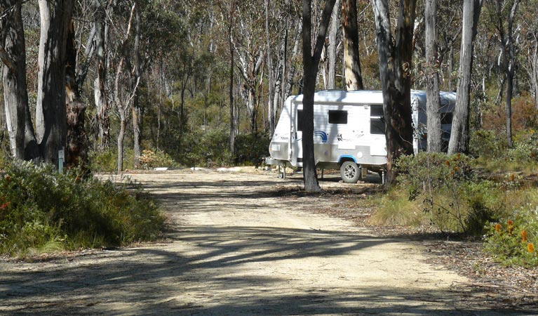 Blatherarm campground and picnic area - Accommodation in Surfers Paradise