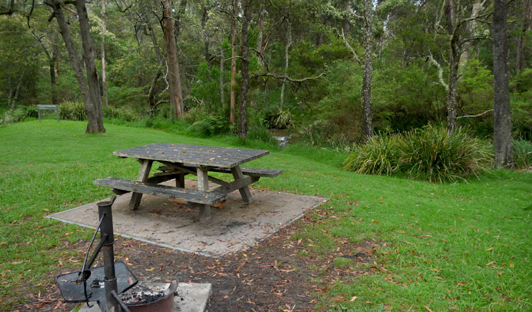 Chaelundi campground - Accommodation in Surfers Paradise