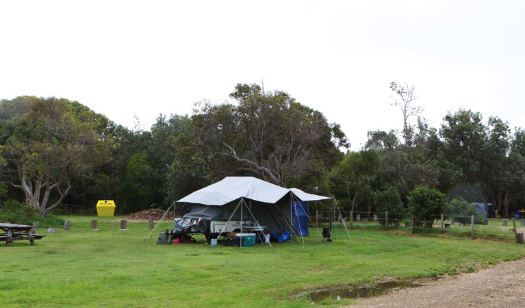 Illaroo campground - Accommodation in Surfers Paradise