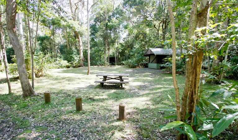 Iron Pot Creek campground - Accommodation in Surfers Paradise