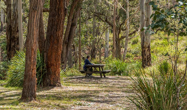 Koreelah Creek campground - Accommodation in Surfers Paradise