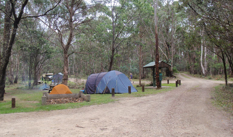 Native Dog campground - Accommodation in Surfers Paradise