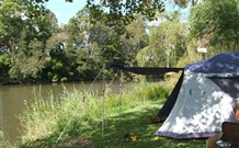 Williams River Holiday Park - Accommodation in Surfers Paradise