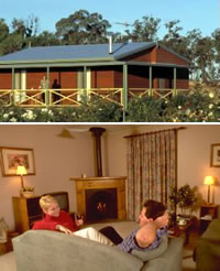 Twin Trees Country Cottages - Accommodation in Surfers Paradise