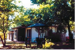 Forest Lodge - Accommodation in Surfers Paradise