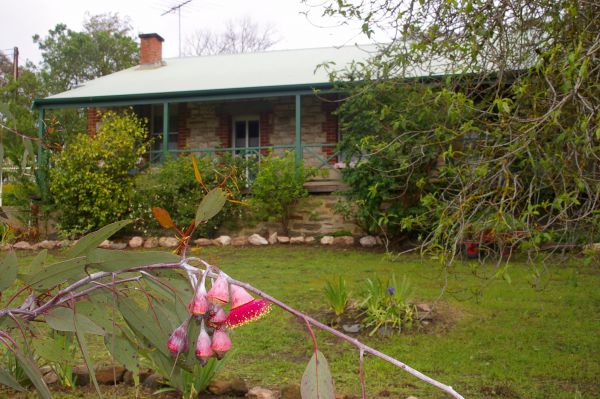 Naimanya Cottage - Accommodation in Surfers Paradise