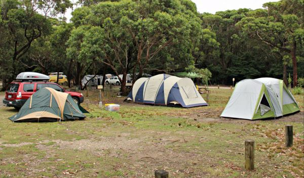 Pretty Beach Campground Murramarang National Park - Accommodation in Surfers Paradise
