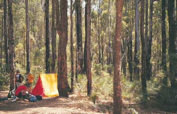 Nanga Mill Camp at Lane Poole Reserve - Accommodation in Surfers Paradise