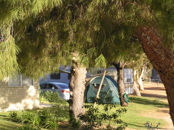 Barmera North Lake Caravan Park