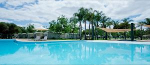 Berri Riverside Holiday Park - Accommodation in Surfers Paradise