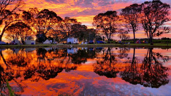 Coonawarra Bush Holiday Park - Accommodation in Surfers Paradise