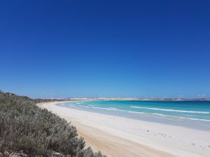Coffin Bay National Park Campgrounds - Accommodation in Surfers Paradise