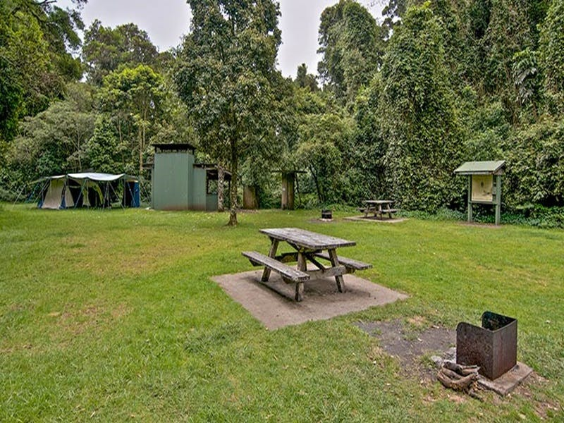 Forest Tops campground - Accommodation in Surfers Paradise