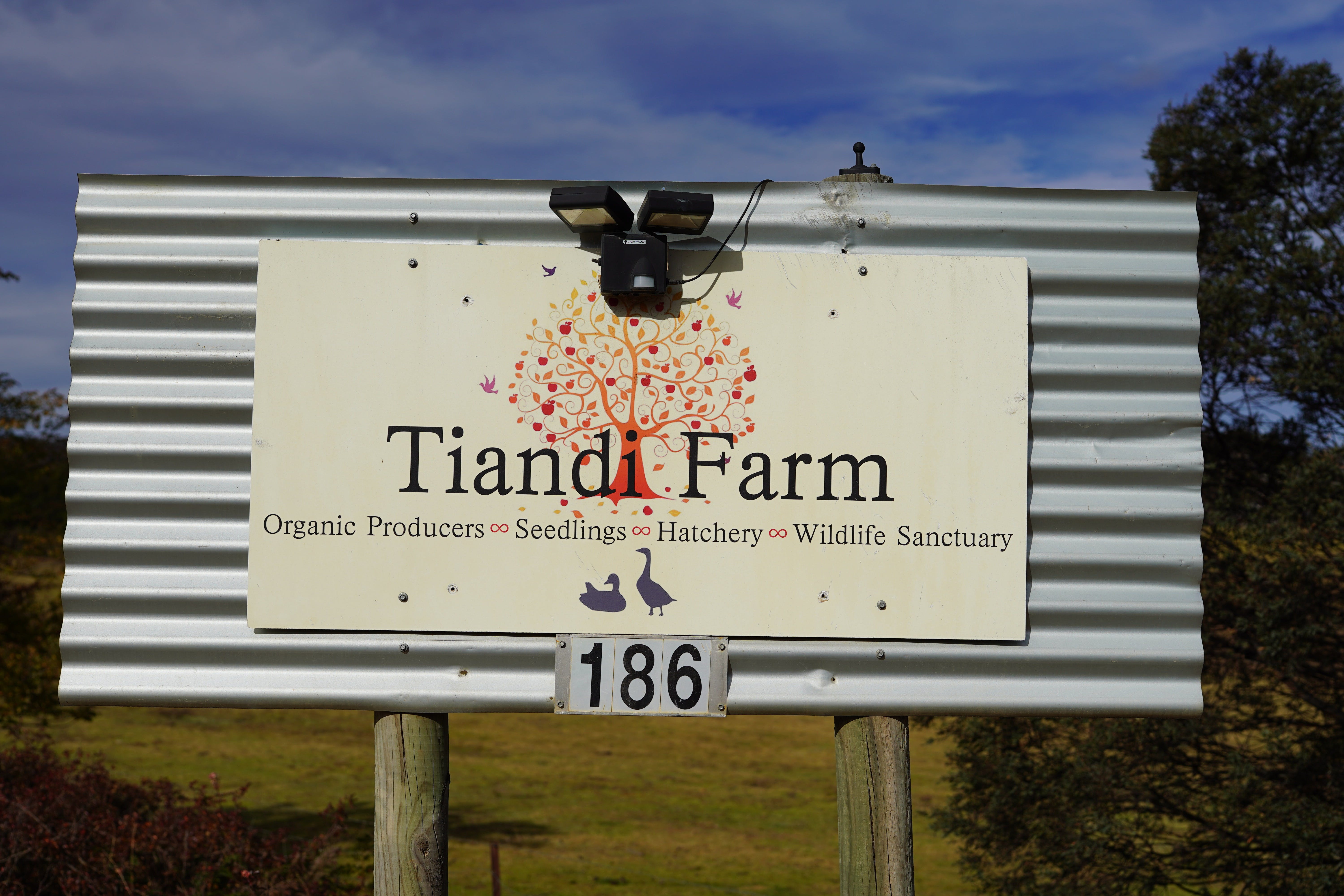 Tiandi Wildlife Sanctuary Farm Stay - Jambalaya Cottage - Accommodation in Surfers Paradise