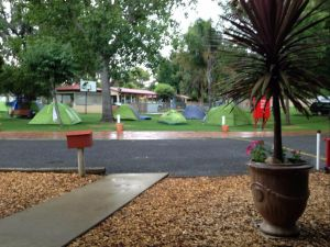 Young Caravan Tourist Park - Accommodation in Surfers Paradise