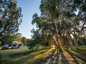 Delicate campground - Accommodation in Surfers Paradise