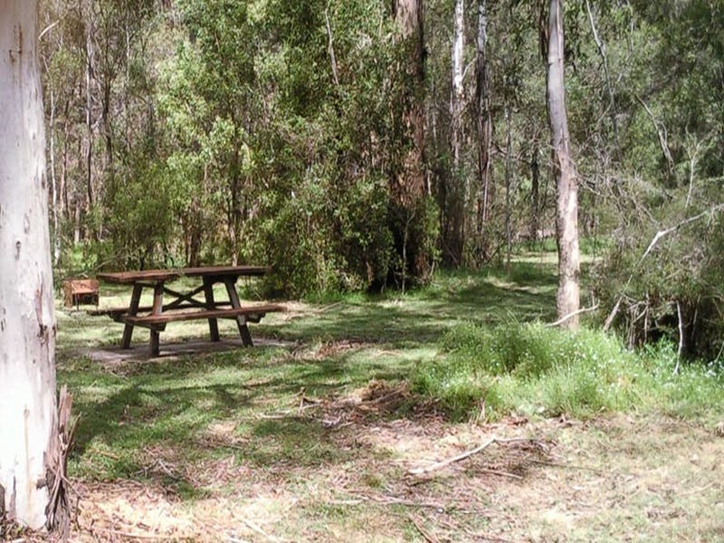 Mulloon Creek campground - Accommodation in Surfers Paradise