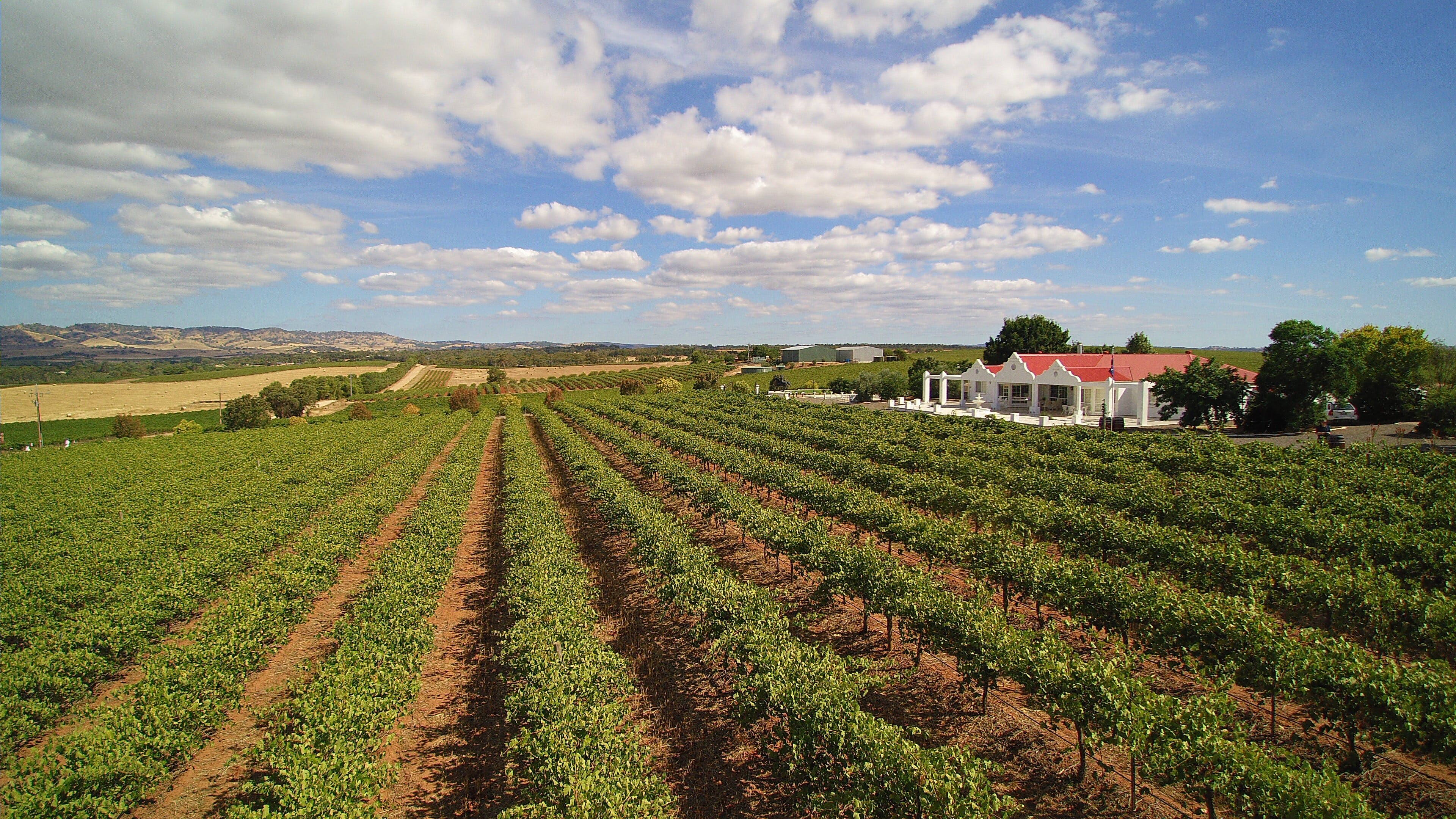 1837 Barossa Luxury Vineyard Cottages - Accommodation in Surfers Paradise