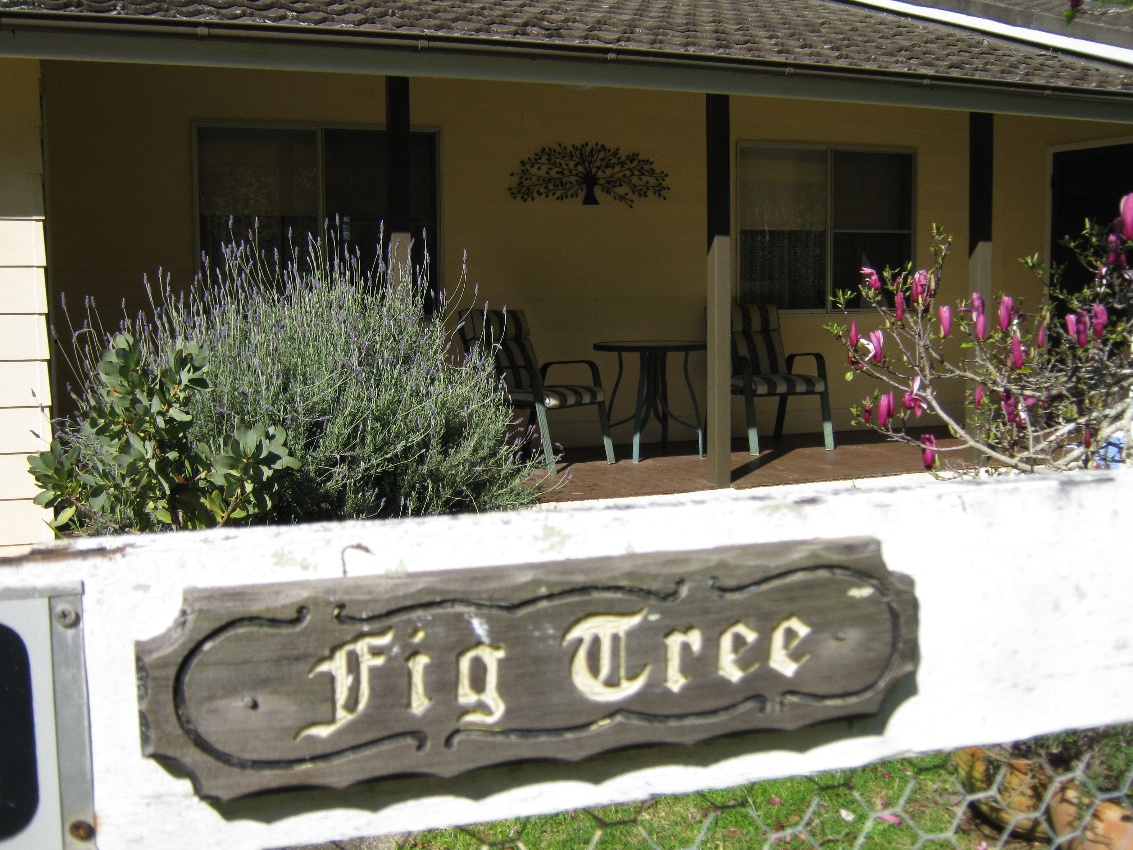 Figtree Cottage - Accommodation in Surfers Paradise