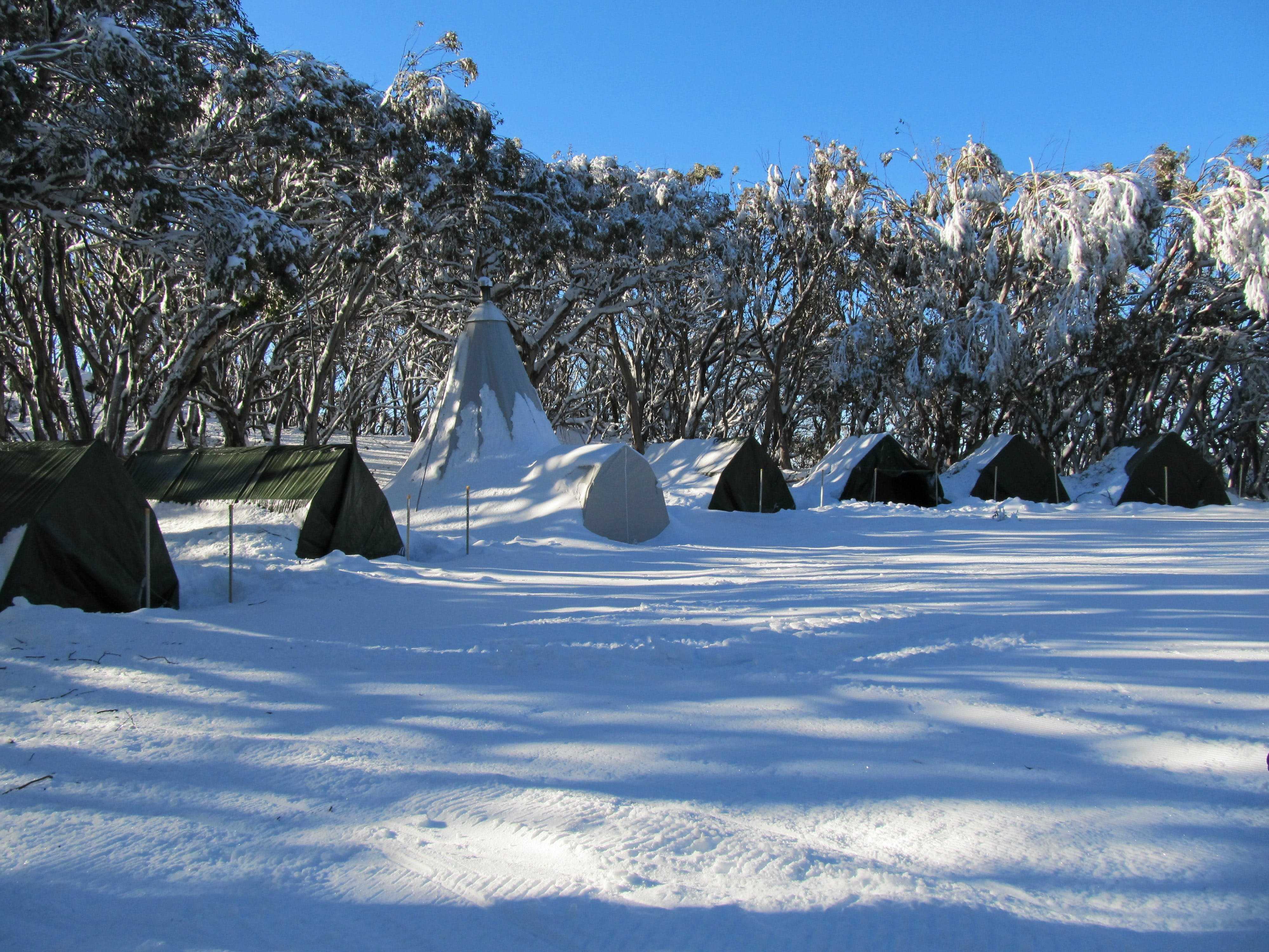 Mt Stirling Alpine Winter Camp - Accommodation in Surfers Paradise