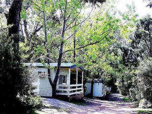 Flinders Caravan Park - Accommodation in Surfers Paradise