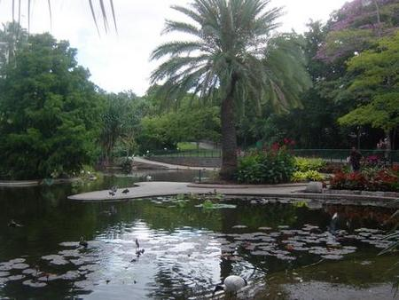 Brisbane City Botanic Gardens - Accommodation in Surfers Paradise