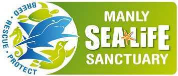 Manly SEA LIFE Sanctuary - Accommodation in Surfers Paradise