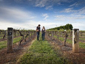 Coonawarra Wineries Walking Trail - Accommodation in Surfers Paradise